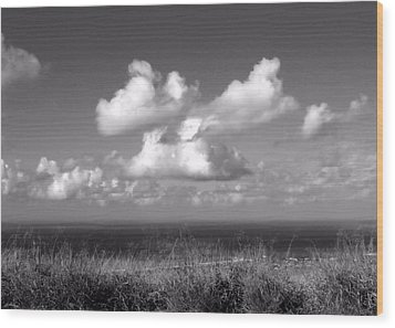 Puffy Clouds Wood Print by Patricia Strand