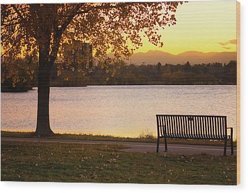 Wood Print featuring the photograph Pull Up A Seat by John De Bord