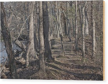 Pumpkin Ash Trail Wood Print