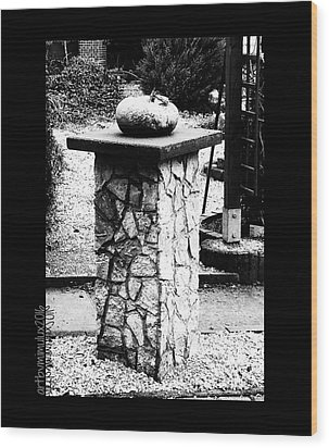 Wood Print featuring the photograph Pumpkin On A Pedestal by Mimulux patricia no No