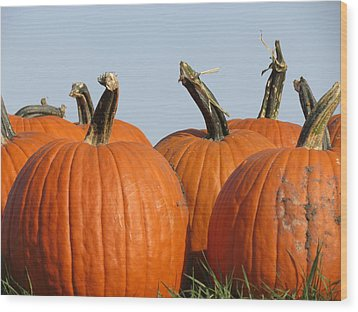 Pumpkin Patch II Wood Print by Kyle West