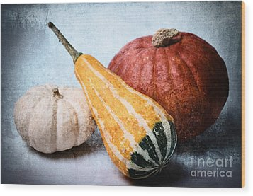 Pumpkins Wood Print by Angela Doelling AD DESIGN Photo and PhotoArt