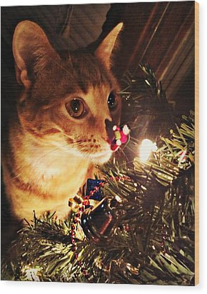 Pumpkin's First Christmas Tree Wood Print by Kathy M Krause