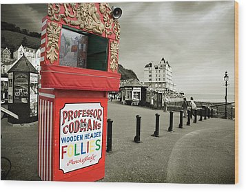 Punch And Judy Theatre On Llandudno Promenade Wood Print by Mal Bray