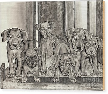 Puppies  Wood Print