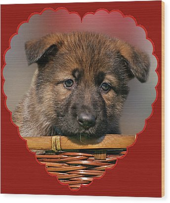 Wood Print featuring the photograph Puppy In Red Heart by Sandy Keeton