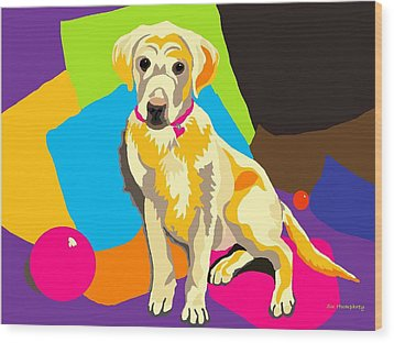 Puppy Princess And The Pillows Wood Print by Su Humphrey