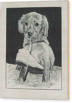 Puppy With Shoe Wood Print by Samuel Showman