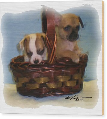 Pups In A Basket Wood Print by Beverly Johnson