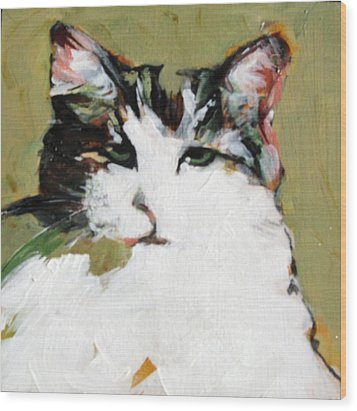 Pur-fect Pose Wood Print by Michelle Winnie