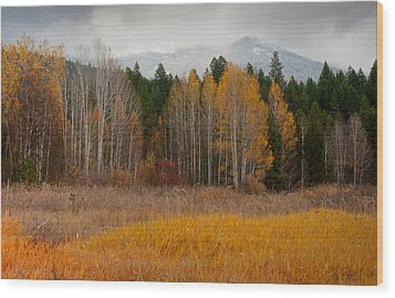 Purcell Gold Wood Print by Idaho Scenic Images Linda Lantzy