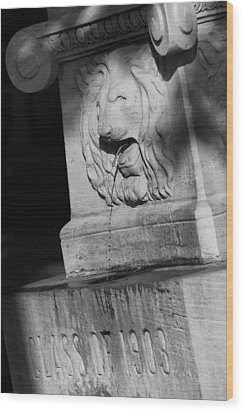 Purdue Lion Fountain Wood Print by Coby Cooper
