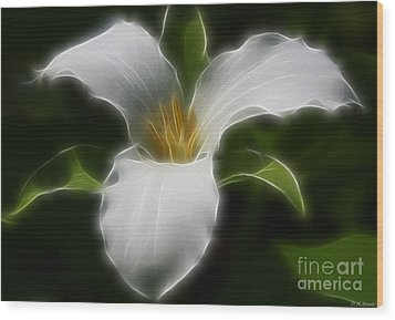 Pure White Trillium Wood Print by Deborah Benoit