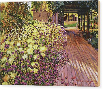 Purple And Gold Wood Print by David Lloyd Glover