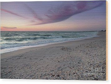 Purple Beach Wood Print