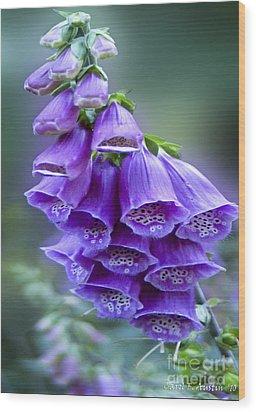 Purple Bell Flowers Foxglove Flowering Stalk Wood Print