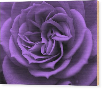 Purple Bliss Wood Print