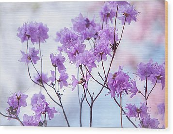 Wood Print featuring the photograph Purple Blue Romance by Jenny Rainbow
