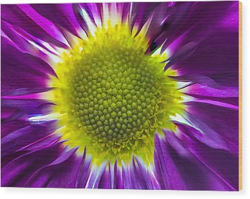 Purple Burst Wood Print