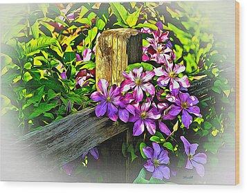 Purple Clematis On Split Rail Fence Wood Print