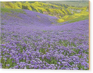 Wood Print featuring the photograph Purple  Covered Hillside by Marc Crumpler