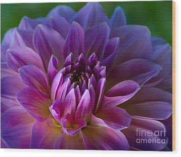 Purple Dream Wood Print by Lutz Baar