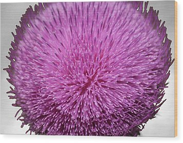 Purple Elegance Wood Print