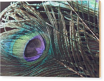 Purple Feather With Dark Background Wood Print