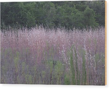 Purple Florida Grass Horizontal Wood Print