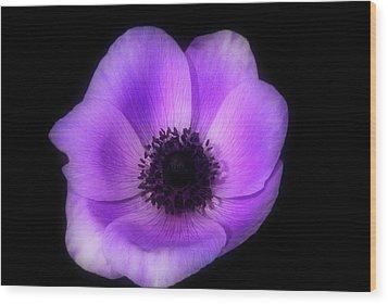 Purple Flower Head Wood Print