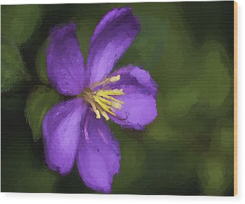 Wood Print featuring the photograph Purple Flower Macro Impression by Dan McManus