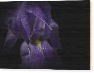 Wood Print featuring the photograph Purple Flower by Ryan Photography