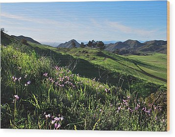 Wood Print featuring the photograph Purple Flowers And Green Hills Landscape by Matt Harang