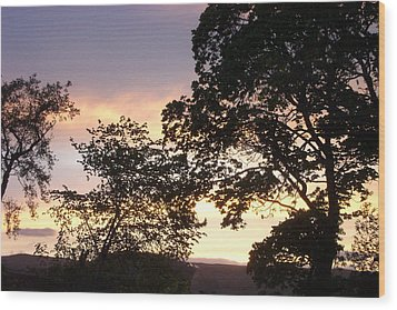 Wood Print featuring the photograph Purple Haze by Charmaine Zoe