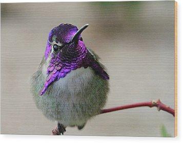 Purple Head Wood Print