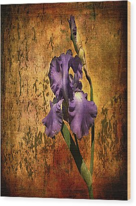 Purple Iris At Sunset Wood Print