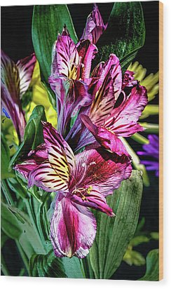 Purple Lily Wood Print by Mark Dunton