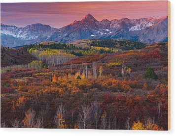 Purple Mountains Majesty Wood Print by Tim Reaves