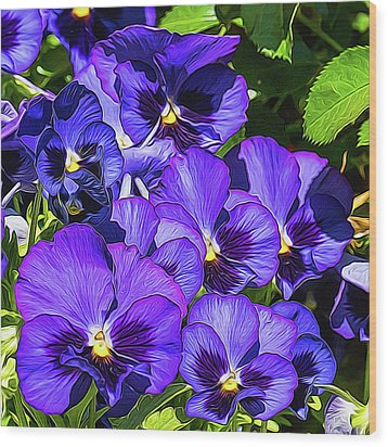 Purple Pansies In Morning Light Wood Print