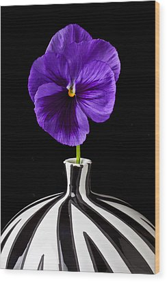 Purple Pansy Wood Print by Garry Gay