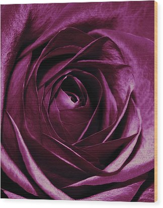 Purple Passion Wood Print by Cathie Tyler