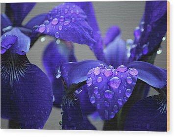 Purple Passion Wood Print by Rowana Ray