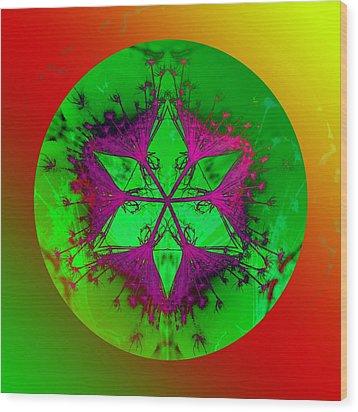 Purple Pentagram Wood Print by Brigita Tekavcic