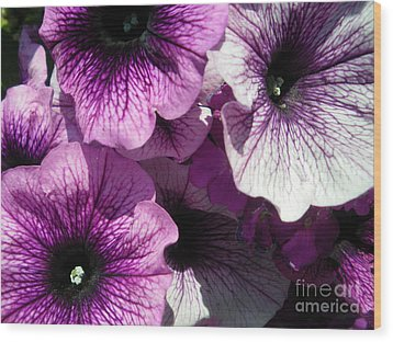 Purple Petunia Paradise Wood Print by Sonya Chalmers