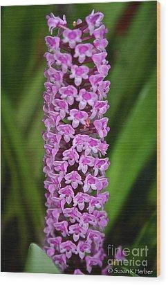 Purple Pillar Wood Print