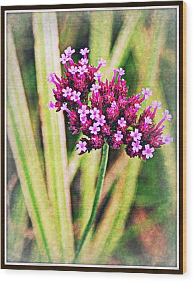 Purple Pleasure Wood Print by Elizabeth Babler