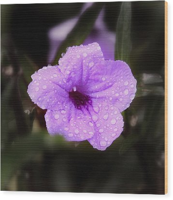 Wood Print featuring the photograph Purple Rain by Joseph G Holland