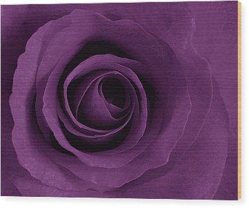 Purple Rose Of Artsy Wood Print by Leonard Rosenfield
