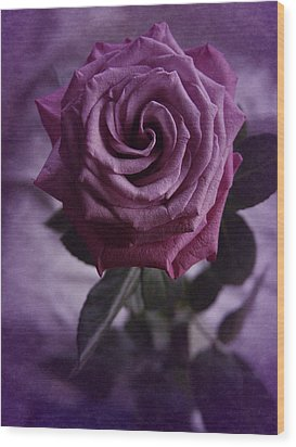 Wood Print featuring the photograph Purple Rose Of December by Richard Cummings