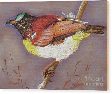 Purple Rumped Sunbird Wood Print